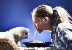 Importance Of Dog Diet